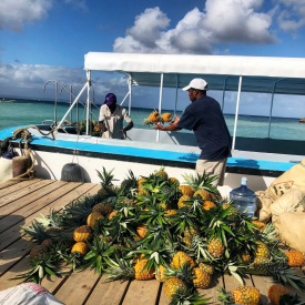 Pina delivery to Cayo Island